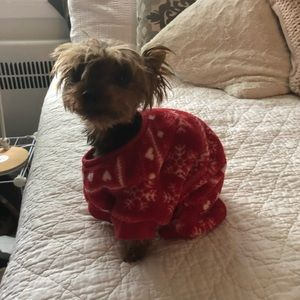 Other - Doggy sweater